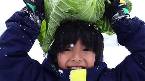 旅育(タビイク)冬のアクティビティ編